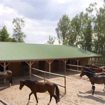 birkenhof-274